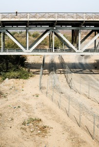 Untitled (Baboons crossing into Zimbabwe from South Africa) 2009