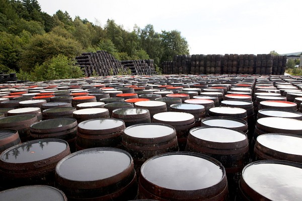 The painted barrels