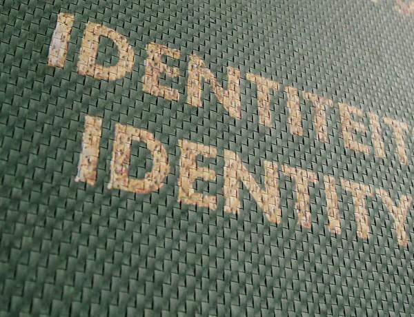 New Identity 2013 detail